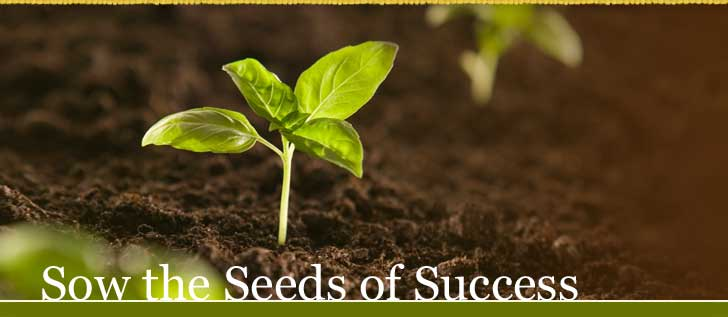 Sow the Seeds of Success